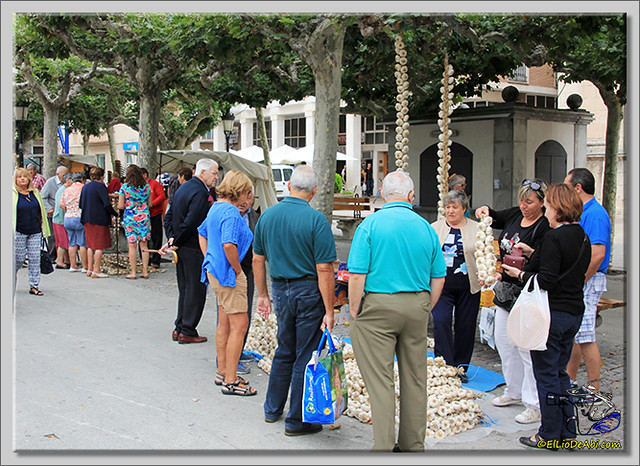 Feria de los ajos en Briviesca (4)