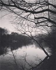 Lake Braddock bw