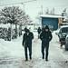 Snow by Stanislaw Pac