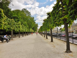 Brussels City Park Pedestrian Path