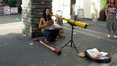 musical instrument, street artist,