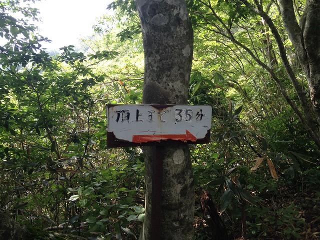 金糞岳 中津尾根コース 「頂上まで35分」