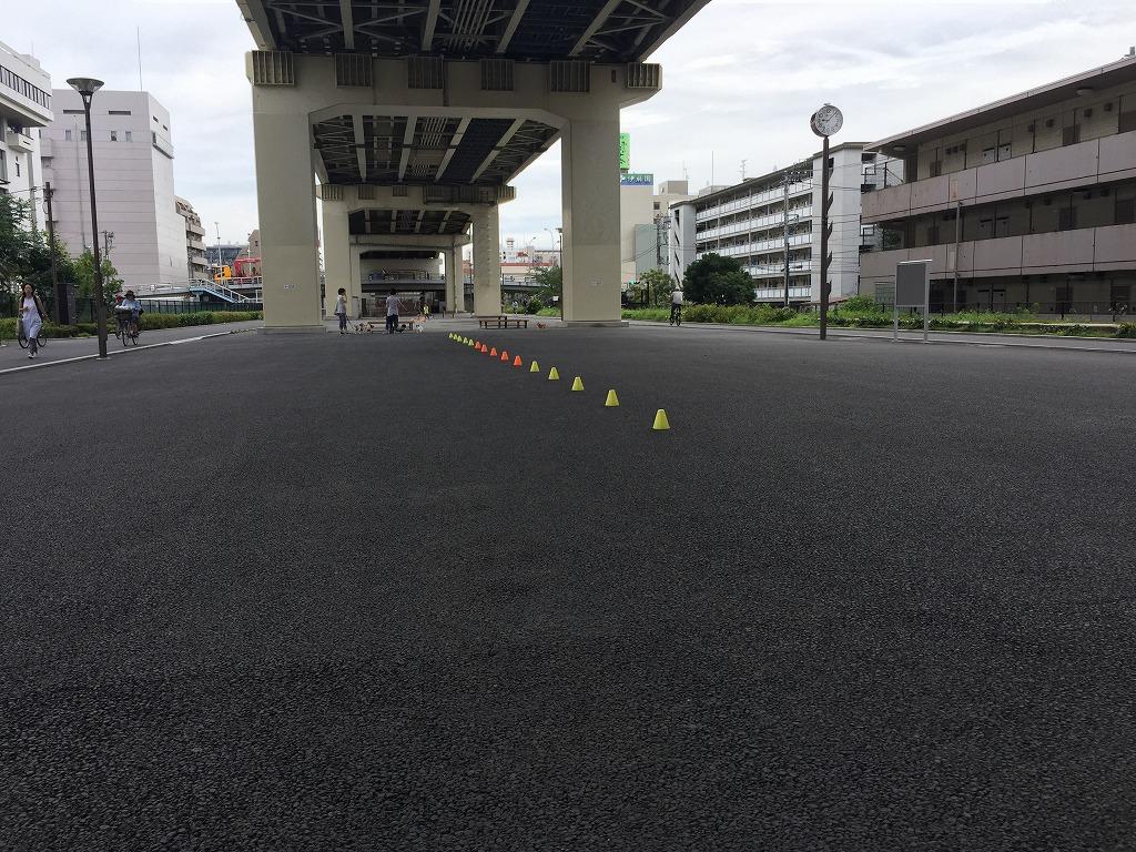 20150718_竪川河川敷公園 (2)