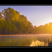 Morning at the Pond by Thomas Grimm - Art of Light