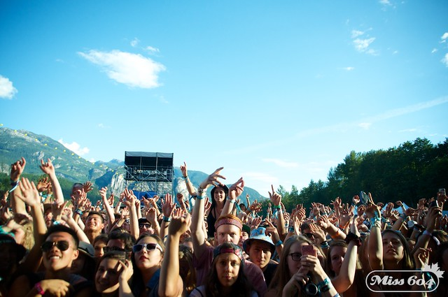SVMF Crowd