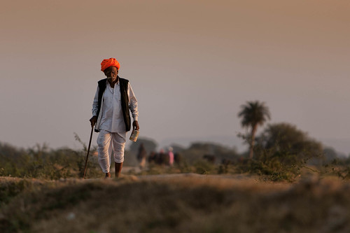 travel india evening rajasthan barlivillage