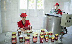 Packaging fruit conserve in Dragash