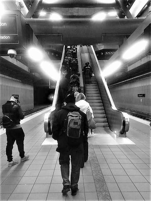 Opposite Day On the Escalator, Capitol Hill Link Light Rail Station