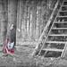 StairwayToGuitarHeaven by shortscale