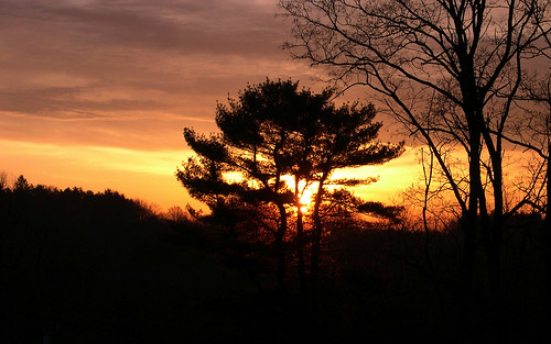 morning trees orange sun black nature silhouette yellow sunrise march pennsylvania widescreen salmon 2006 lehman friday 24th nepa 1920x1200 aaronc aaroncampbell backmountain 032406