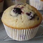 Brombeer-Muffins_sm1