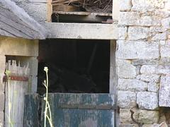 Barn Door 20050704 08 - Photo of Guitté