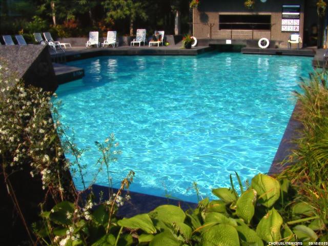 Hotel Bonaventure Pool Access