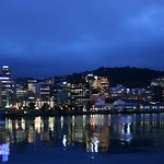 Wellington at dusk
