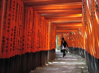 A fugitive presence under the torii - 無料写真検索fotoq