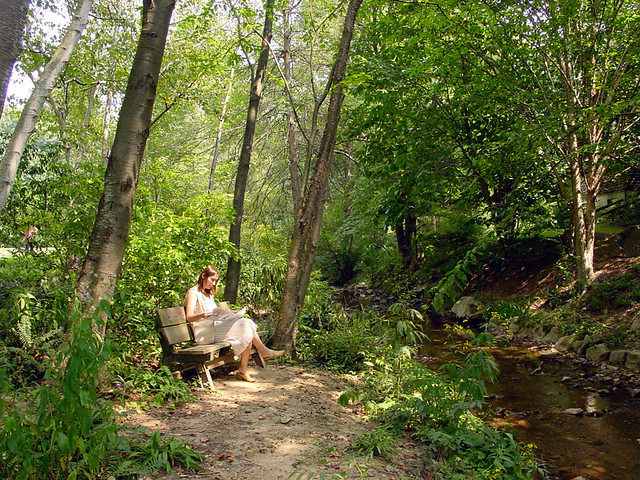 Asheville Botanical Gardens Ii Explore Kingary 39 S Photos
