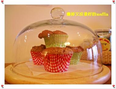 muffin10232004 006