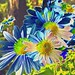 Blue Mums by Archman8