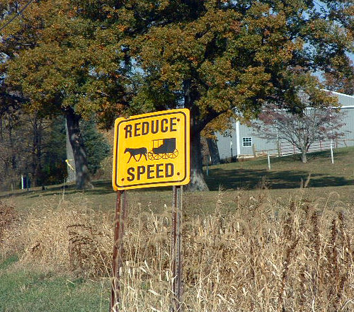 Reduce Speed for Horse and Buggy