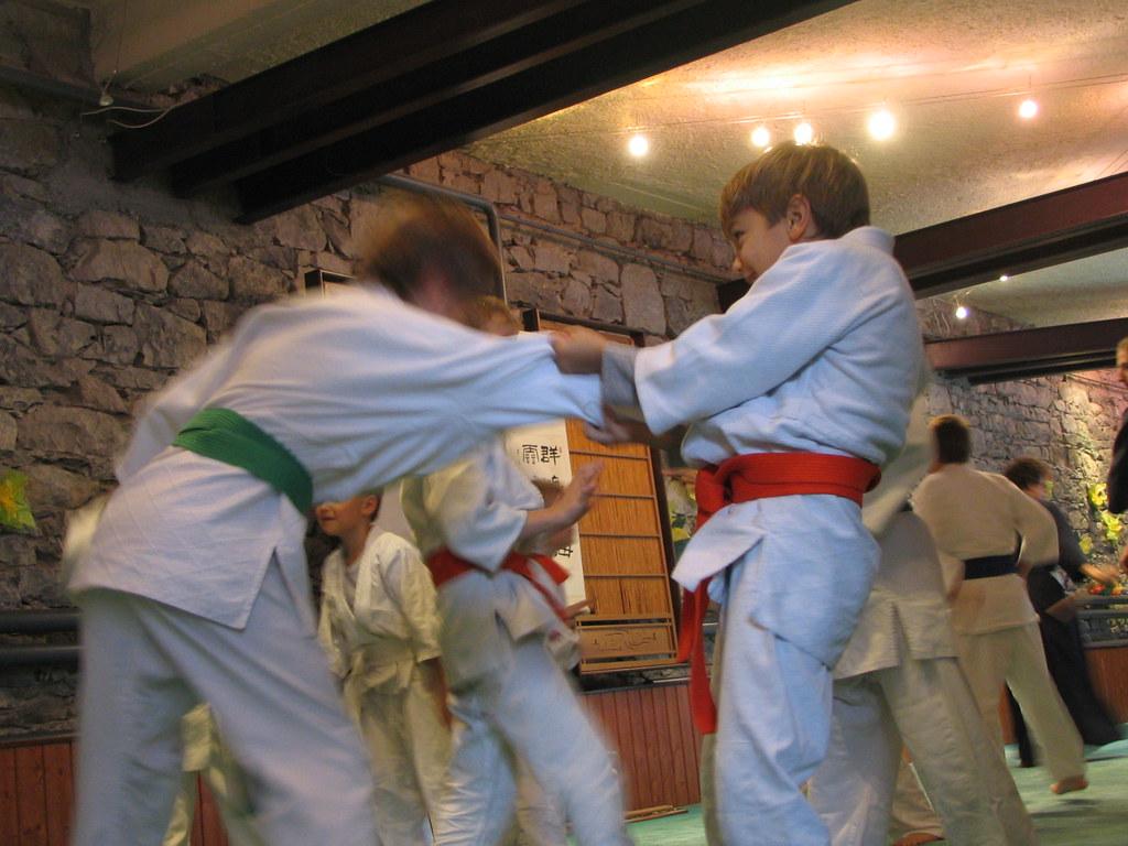 Portes ouvertes au Reighikan Dojo
