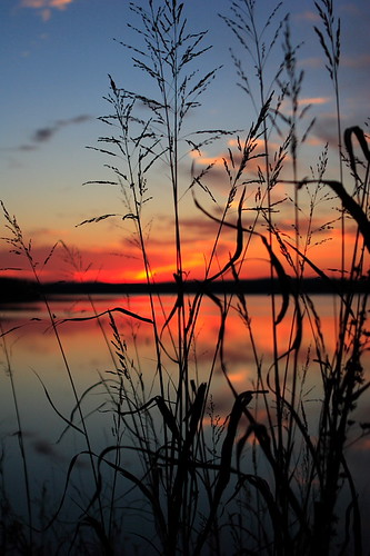 blue autumn sunset sky orange sun lake reflection 20d nature silhouette topv111 azul 1025fav wow skyscape evening nc otoño mirroredthings naranja 2470l chathamcounty jordanlake img6518 beverrettjordanlake