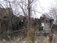 Abandoned House Leesburg Cover Photo