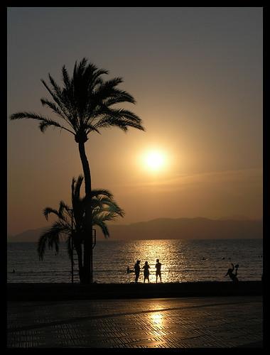 sunset sea searchthebest palm mallorca breathtaking elarenal 25faves mywinners diamondclassphotographer flickrdiamond colourartaward platinumheartaward