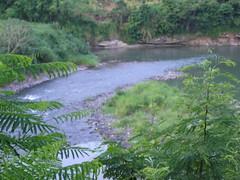 Puente Mataplatano's river