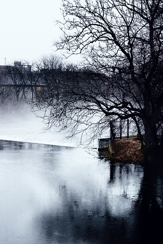 tree window water boston fog river landscape charlesriver adventure watertown smallsize stillburning