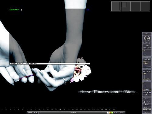 2006-02-15のデスクトップ
