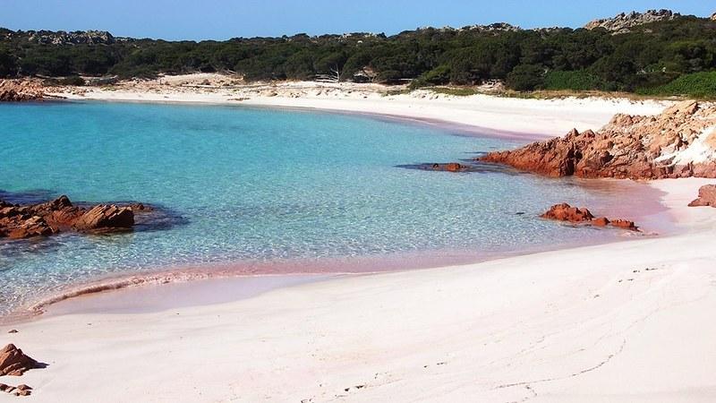 Resultado de imagen para bonaire playa rosada