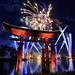 Fireworks Friday at Epcot by Gregg L Cooper