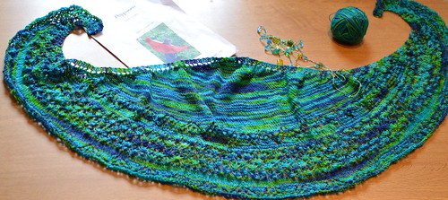 Knitting Projects from My KnitUp Group