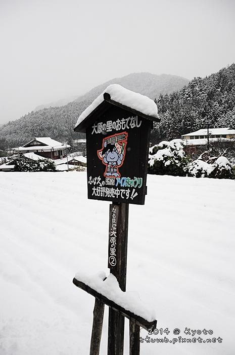2014雪三千院 (2).jpg