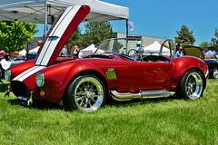 Mid 1960's Shelby Cobra