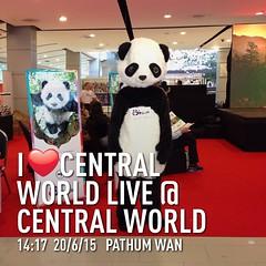 การท่องเที่ยว มณฑลเสฉวน โรดโชว์ ที่เซ็นทรัลเวิล์ด #instaplace #instaplaceapp #place #earth #world  #ทราเวิลโปร #travelprothai #thailand #TH #pathumwan #centralworldlive@centralworld #shopping #street #day