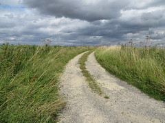 Track on the Wolds near Worlaby