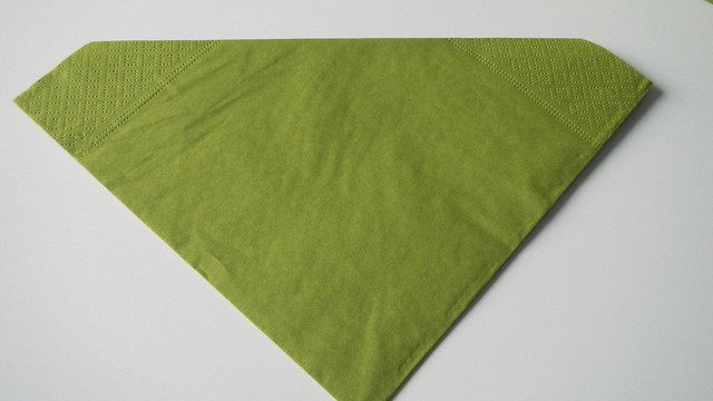 Folded Napkins 9