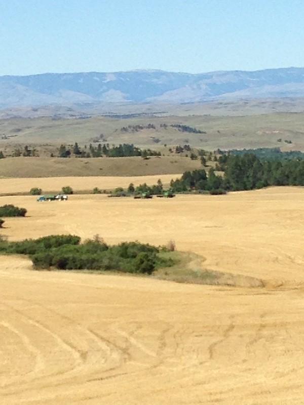 HPH-July 2015 Montana