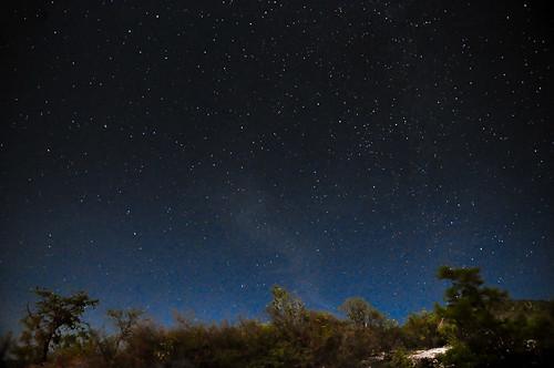 Chazumba Nocturna Julio 2015 (11)