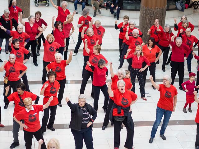 Flash Mobs, Dec. 1/16