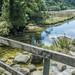 Small photo of Abel Tasman National Park