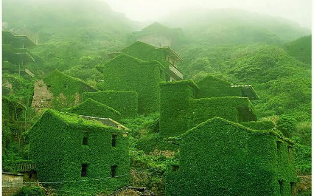 Goqui Island: il villaggio rurale dove la natura ha ripreso il suo posto