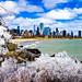 Icy Chicago Skyline by (Jessica)