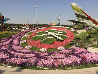 Image of Dubai Miracle garden near Dubai.