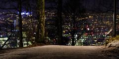 Oslo, lørdag 21. januar 2017, kl. 17 6