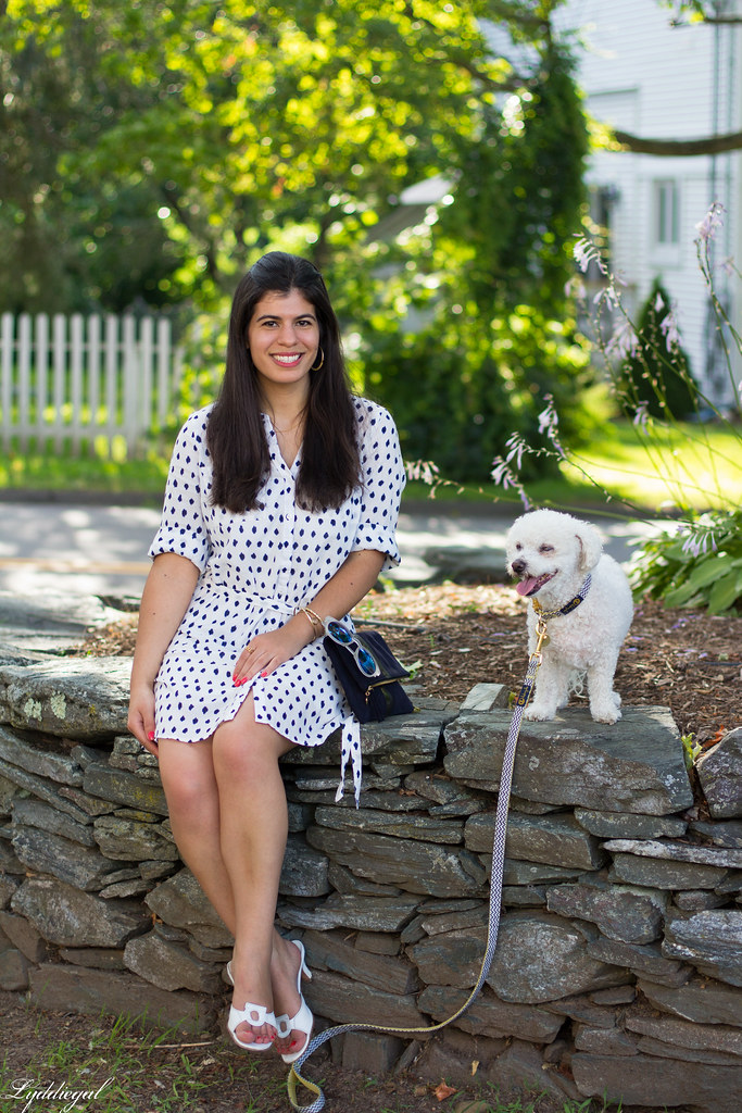 polka dot shirt dress, clare v clutch, dog walking outfit-12.jpg