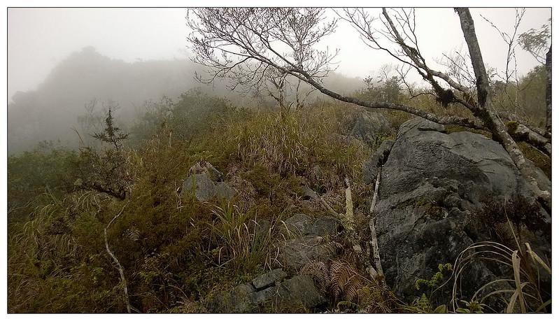 嵐山照片20