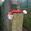 Oh no! What happened to Santa? #dogwalk