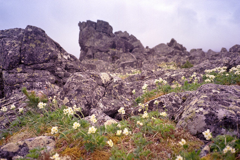 Konzhakovskiy Kamen, Конжаковский камень, Серебрянский камень